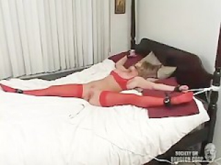 amber micheals gets her pussy vibrated and sucks a dildo
